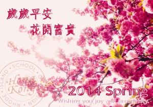 RISD HK-01_副本